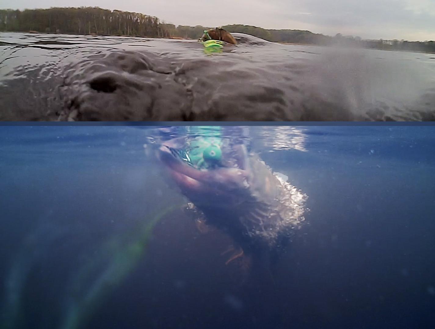 05 Underwater Popper