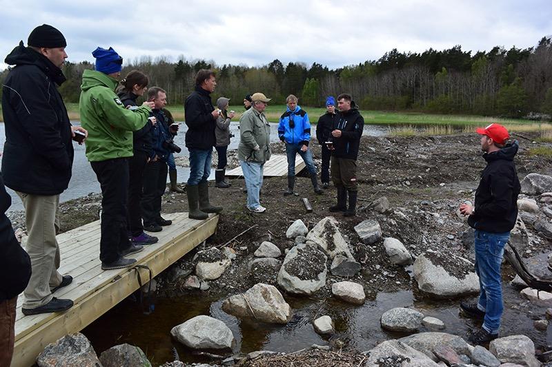 De besøgende hos de svenske geddefabrikker viste med al tydelighed hvor lidt der skal til - men hvor stor en betydning de kan have for bestandene og for fiskeriet.