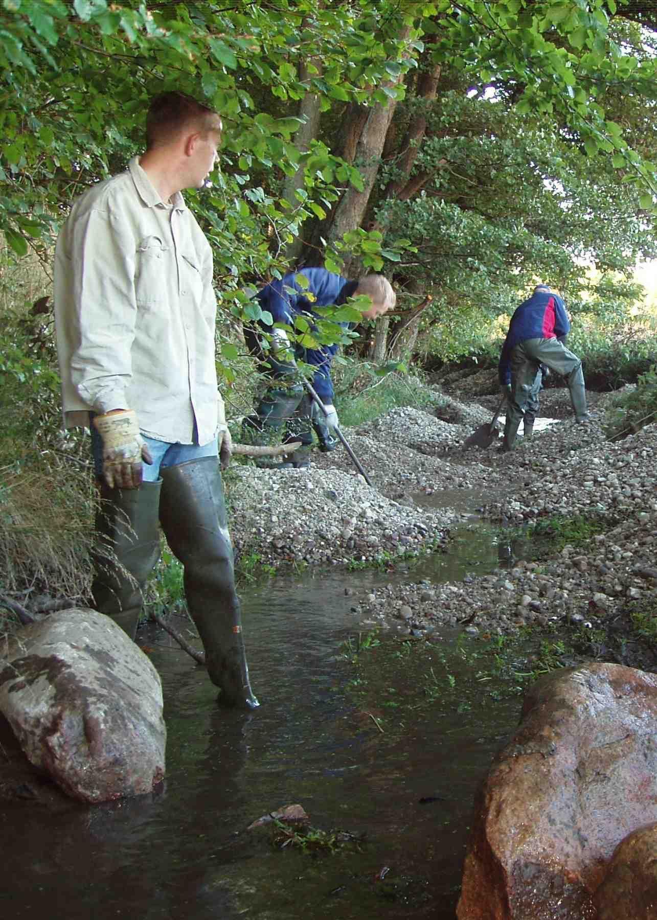Billed 1, Gydegrus i vandløb