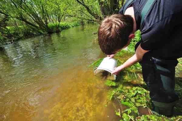 Fishing Zealand arbejder sammen med flere frivillige - bl.a. med udsætning af ørredyngel.