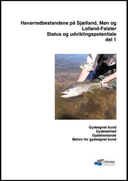 Havørredbestandene på Sjælland, Møn og Lolland-Falster