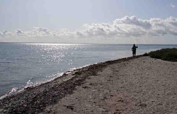 Kystfiskeri - Jan Andre Delaporte