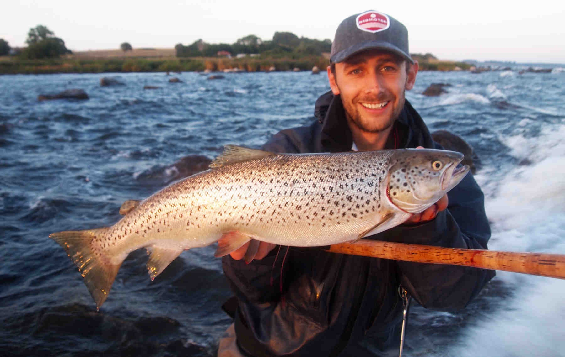 Hvert efterår blusser debatten om hjemtagning af farvede fisk op. Det gjaldt også denne fisk som David Thormar fangede d. 7. sep.