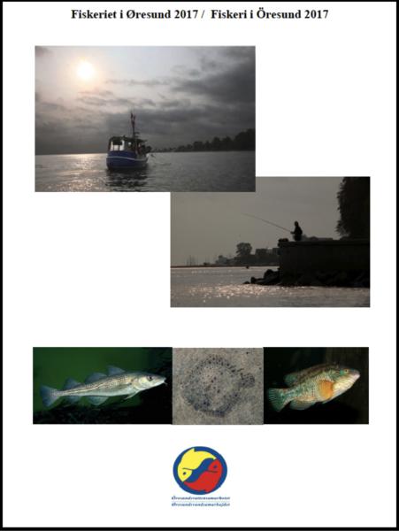 Fiskeriet i Øresund, 2018