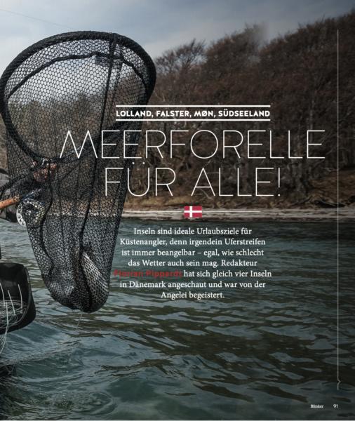 Lolland, Falster, Møn: Meerforelle für Alle - Blinker 2019
