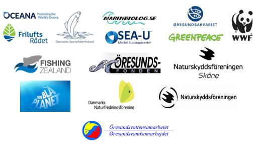 Her ses en række organisationer som står bag erklæringen om bedre beskyttelse af Øresund og et stop for sandsugning.